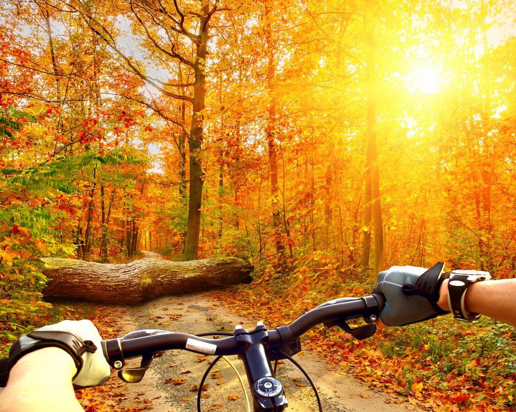 Cyklistické okuliare vám doprajú pohodlie i bezpečie